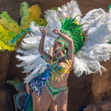 רקדנית ברזילאית בסגנון סמבה